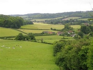 Hambledon Valley